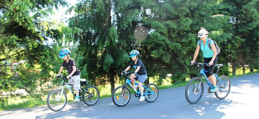 Cyklochodník