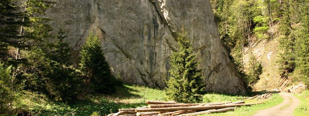 Iľanovská dolina, Nízke Tatry