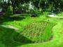 Pri školách chce mať radnica dažďové záhrady